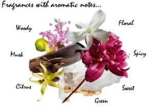 Групи аромати